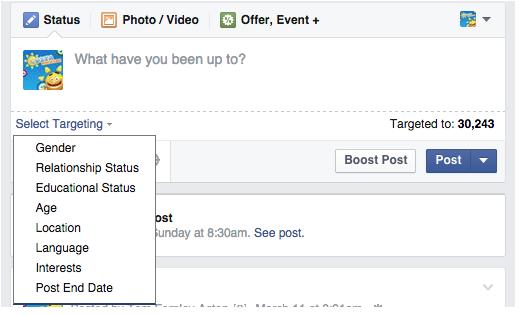 Screenshot of Facebook targeting drop down menu